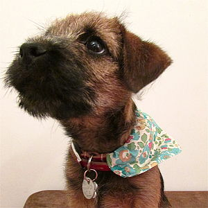 Dog Neckerchief Bandana Liberty Print - dogs