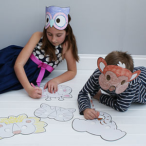 Animal Colour In Party Masks - fancy dress
