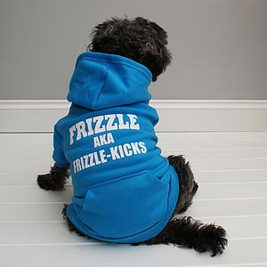 Personalised My Special Name Dog Hoodie - out and about