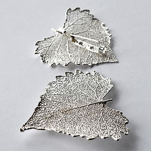 Silver Cotton Wood Leaf Brooch