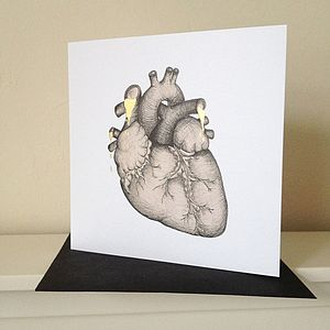 Anatomical Heart Illustration Valentines Card - original valentine's cards
