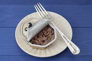 Personalised Pet Food Fork - best under £20