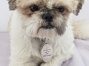 Personalised Silver Plated Spoon Dog Tag - dogs