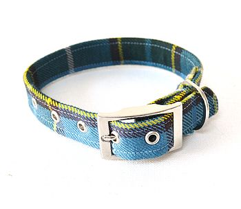 The Laxey Manx Tartan Dog Collar