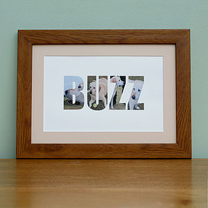 Personalised Framed Pet Photograph Print - pet-lover