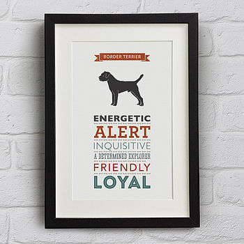 Border Terrier Dog Breed Traits Print
