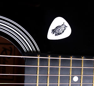 Plectrum In Six Animal Designs