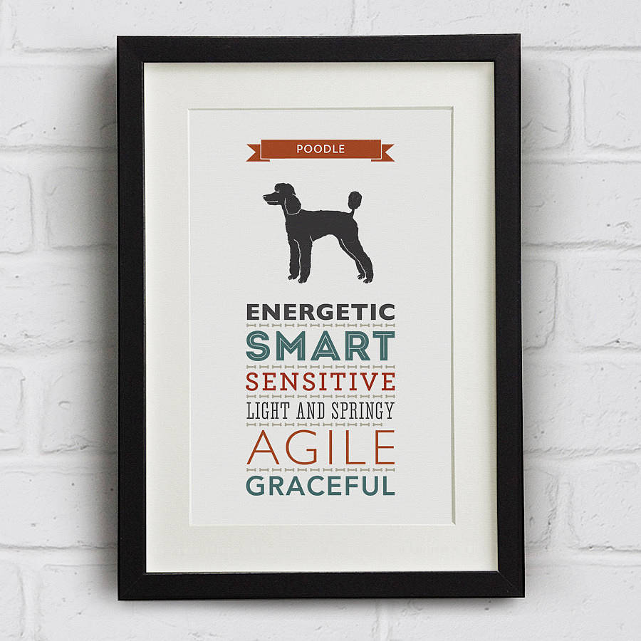 Poodle Dog Breed Traits Print
