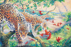 Amazon Jungle Wildlife - prints & art
