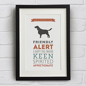 English Springer Spaniel Breed Traits Print