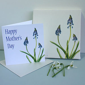Grape Hyacinth Mothers Day Gift Set - paintings & canvases