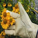 Leather Gardening Gloves For Larger Hands