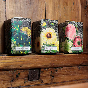 Dark Forest Provencal Soap - home