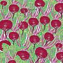 Beetroot 100% Plantable Wrapping Paper