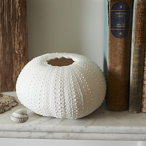 Coastal Porcelain Sea Urchin Tea Light - candles & home fragrance