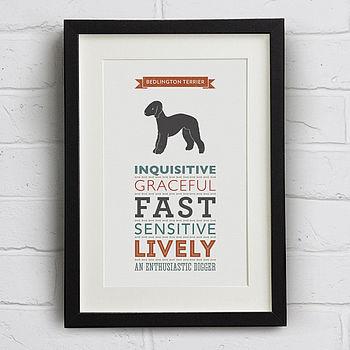 Bedlington Terrier Dog Breed Traits Print