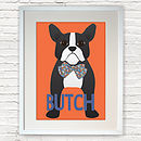 Personalised Boston Terrier