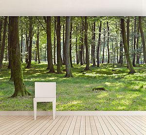 Woodland Forest Self Adhesive Wallpaper - dining room