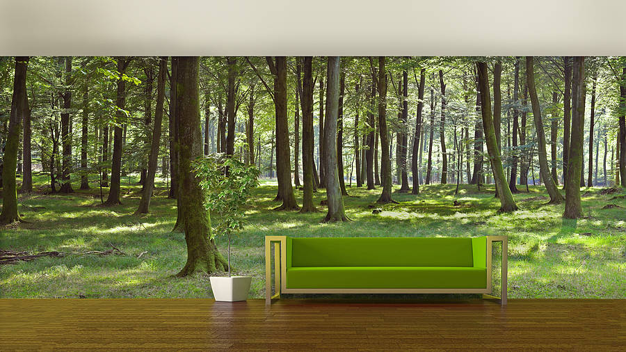 Wall Murals Product : Woodland forest self adhesive wallpaper by oakdene designs