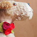 Florrie Dog Collar