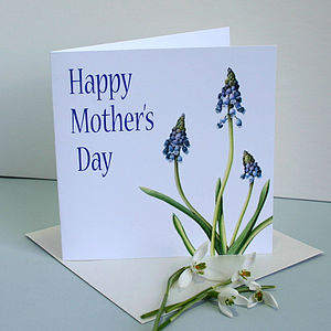 ' Grape Hyacinth ' Mothers Day Card