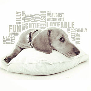 Personalised Pet Photo Word Print - photography & portraits for children