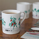 Seasonal Garden Mug Tomatoes