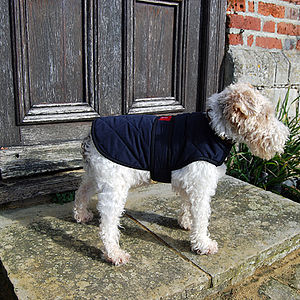 Handmade Deluxe City Coat - dogs