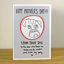'From Your Dog / Dogs' A6 Mother's Day Greetings Card