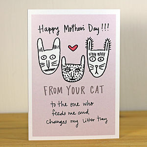 'From Your Cat / Cats' A6 Mother's Day Greetings Card - mother's day cards