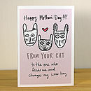 'From Your Cat' A6 Mother's Day Greetings Card