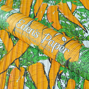 Plantable Carrot Wrapping Paper - cards & wrap