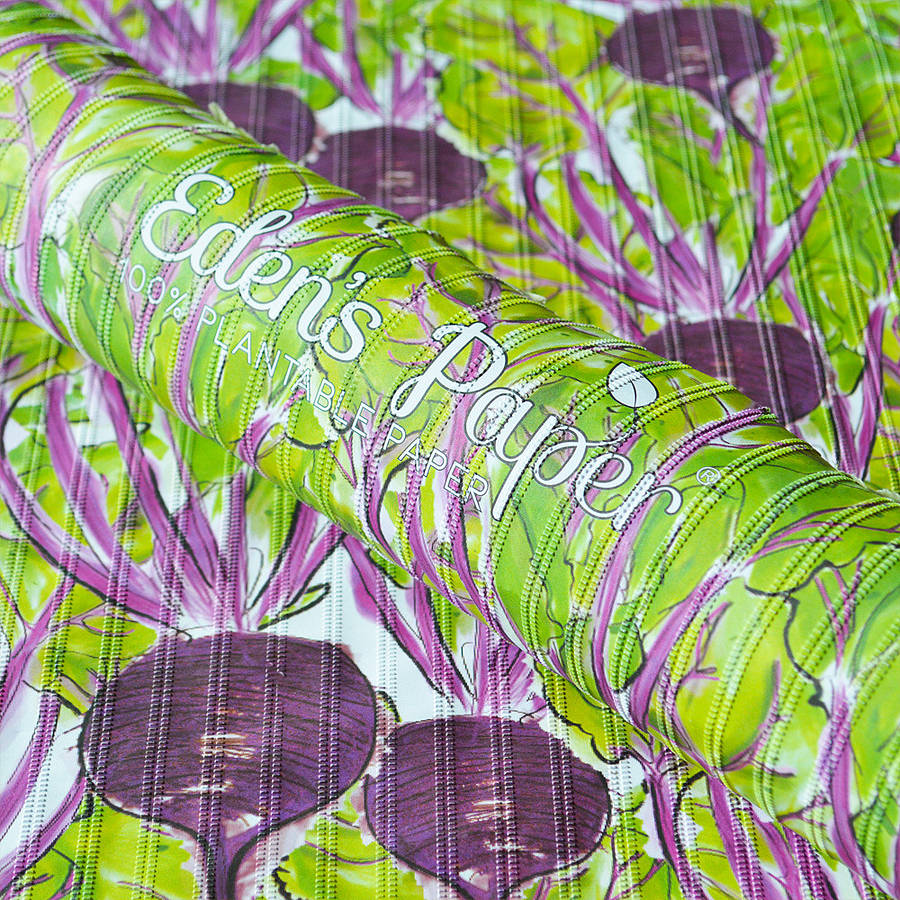Eden's Paper Beetroot 100% Plantable Wrapping Paper