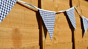 Blue Check Bunting - children's parties