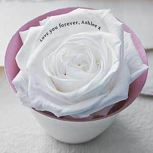 Personalised Rose Flower Keepsake - flowers & plants