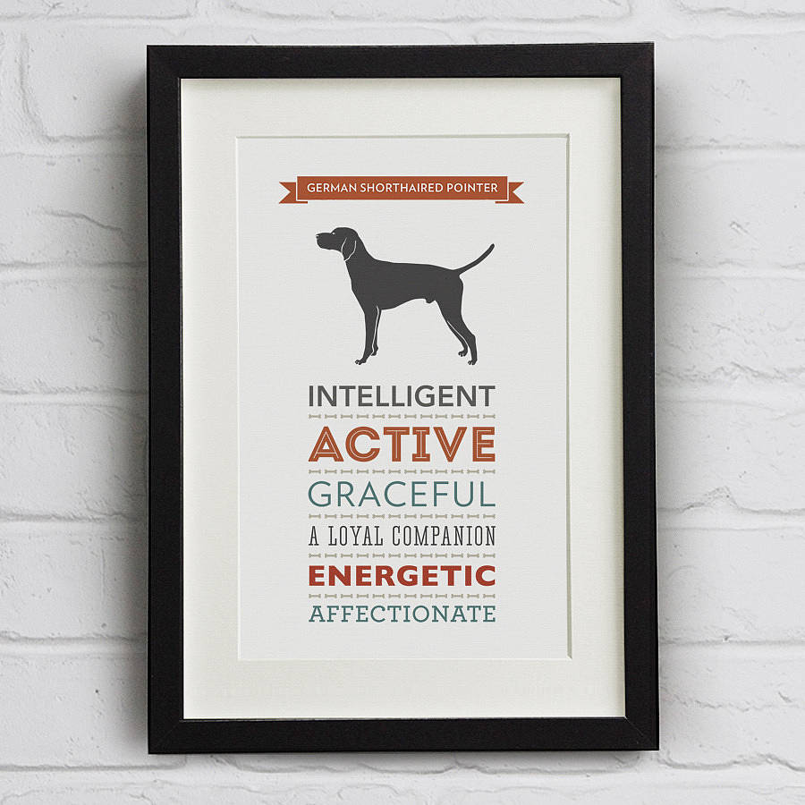 German Shorthaired Pointer Breed Traits Print