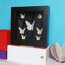 Bespoke Small Butterfly Collection Artwork
