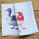 duck and bird cotton 50x50cm