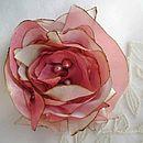 Faint Pink 680
