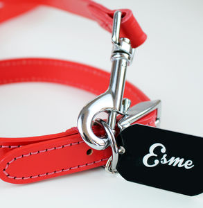 Personalised Leather Collar - winter sale