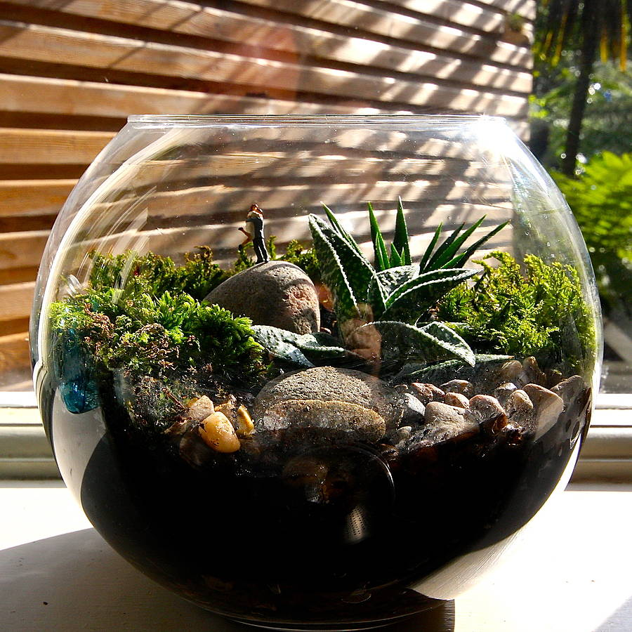 terrarium kit the lovers by london garden trading. Black Bedroom Furniture Sets. Home Design Ideas