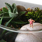 Mini World Terrarium Kit The Bather - garden