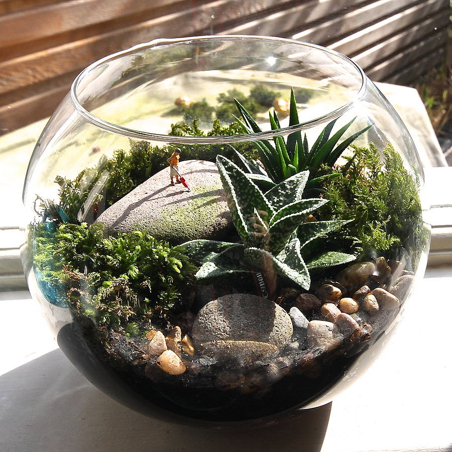 mini world terrarium kit hoovering by london garden trading. Black Bedroom Furniture Sets. Home Design Ideas