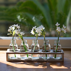 Wooden Tray Of Five Mini Bottles - vases