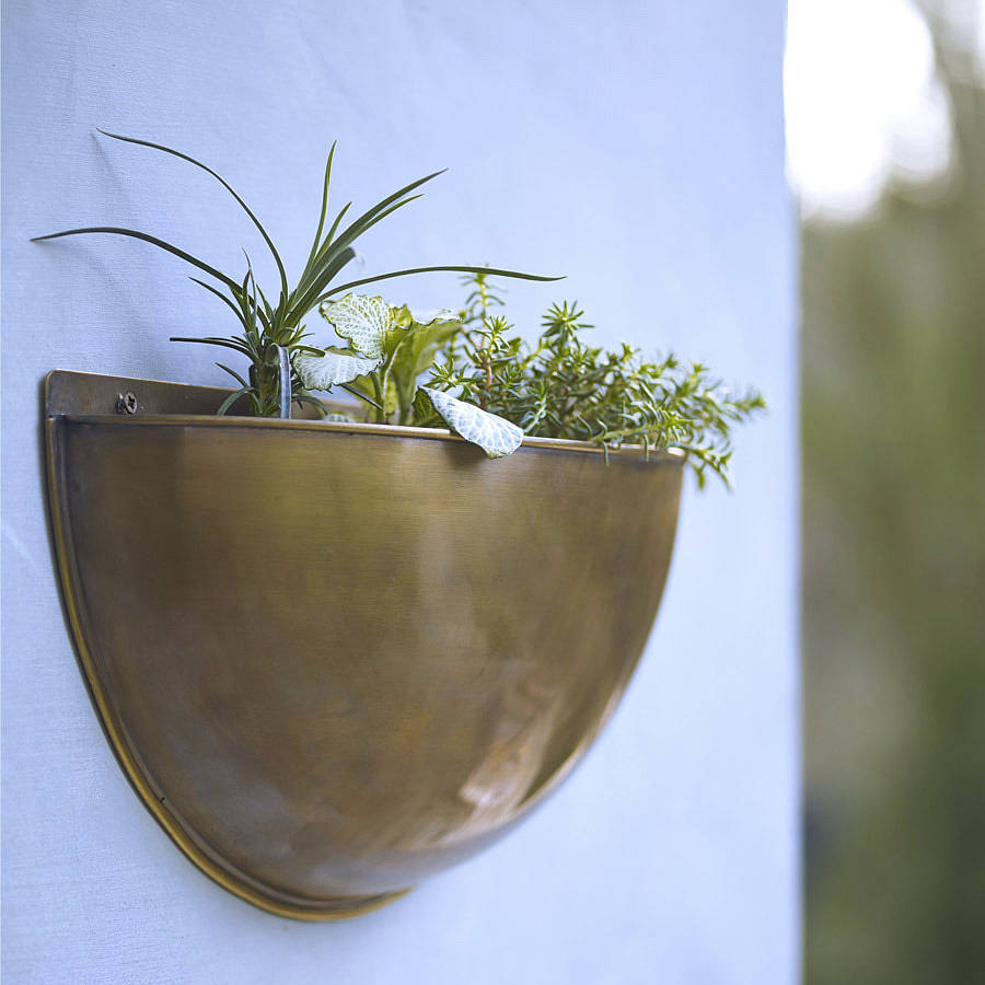 Sola Brass Wall Planter By Rowen Wren