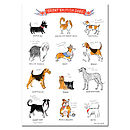 Alice Tait 'Great British Dogs' Print