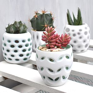 Mini Cameo Pots - lights & candles