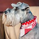 Dog Neckerchief Red Patchwork/Spot