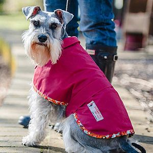 Terrier Waterproof Dog Coat - dogs