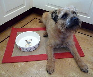 Dog Bowl With A Portrait Of Your Dog - food, feeding & treats